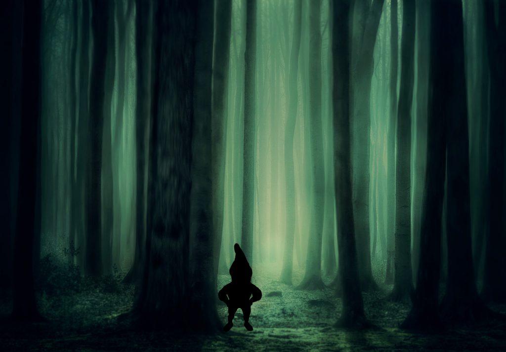 In den finsteren Tiefen der Wälder hausen Giftzwerge.